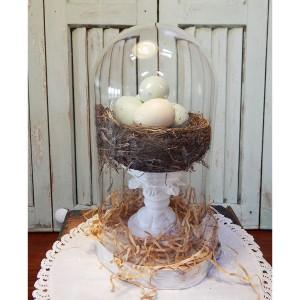 bird nest cloche 8
