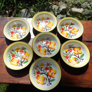 enamelware bowls 2