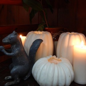 fall candles & squirrel cropped 2