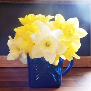pitcher with daffodils